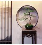 新中式松树盆栽组合3D模型下载-[ID]45224