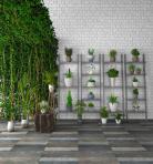 现代植物盆栽花架3D模型下载-[ID]43437