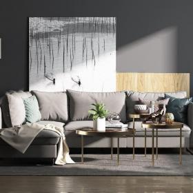 欧式沙发 (2)3d模型